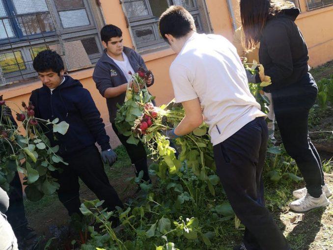 Foto 11 Liceo Brasil